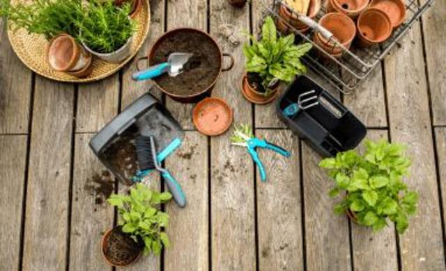 Gartengestaltung Idee Übersicht
