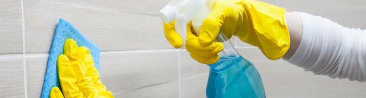 Reinigung_Schutz_Pflege