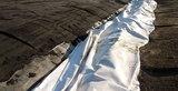 BONAR Vlies NW13 aus PP - weiß 4000 mm x 100 m/Ro.