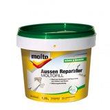 Molto Aussen Reparatur Moltofill 1,25 kg